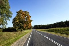 Passing an empty asphalt road Stock Images