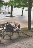 Homeless old man sleeping on a bench Stock Images