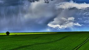 Passing storm. The storm is coming over this field bathing in the sun light Stock Photos