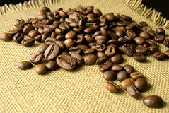 Passion for Coffee Stock Image