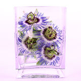 Passion flowers in vase Royalty Free Stock Image