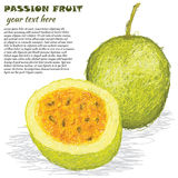 Passion fruit. Closeup illustration of fresh passion fruit in white background stock illustration