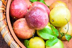 Passion fruit. In a basket royalty free stock photos