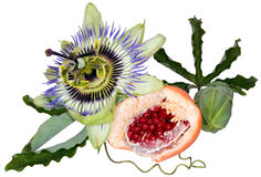 Passion fruit cutout Royalty Free Stock Photo