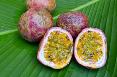 Passion fruit on green leaf Royalty Free Stock Images