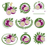 Passion fruit labels and elements set. Vector royalty free illustration