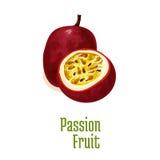 Passion fruit maracuya exotic isolated icon. Passion fruit maracuya. Vector isolated icon of exotic tropical isolated fruit. Whole and slice half cut fresh Royalty Free Stock Image