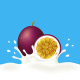 Passion fruit and milk or yogurt. Passion fruit falling into milky splash on blue background. Vector illustration Royalty Free Stock Images