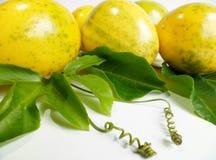 Passion fruit (Passiflora edulis) Stock Photo