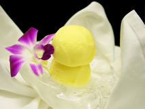 Passion fruit sorbet stock images