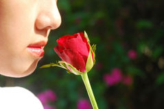 Passion of love Stock Photography