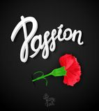 Passion poster design Royalty Free Stock Images