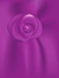 Passion pourprée Rose Images libres de droits