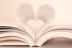 Passion for reading Royalty Free Stock Image