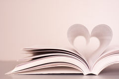 Passion for reading Royalty Free Stock Photo