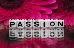 Passion text message Stock Image