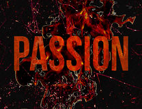 Passion Typography Grunge Style Illustration Design Stock Photography