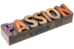 Passion word in vintage wood type Royalty Free Stock Images