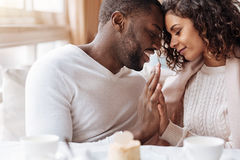Passionate African American couple touching hands in the cafe. Peacefulness in us. Delighted peaceful positive African American couple sitting in the cafe and Royalty Free Stock Photo