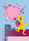 Passionate aria of in love cat Royalty Free Stock Photography
