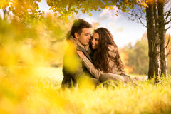 Passionate love under the tree Stock Image