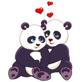 Passionate pandas Stock Photography