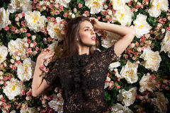 Passionate romatic lady posing sensual on flower background. In studio photo. Beauty concept. Floral decoration Stock Photography