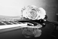 Passione e suono, primo piano fotografia stock