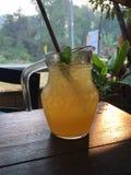 Passionfruit汁液 库存图片