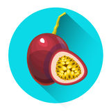 Passionfruit Colorful Fruit Icon Royalty Free Stock Photos