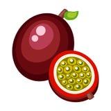 Passionfruit dos desenhos animados em um fundo branco Foto de Stock