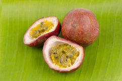 Passionfruit (Passiflora edulis). Is beneficial to the body royalty free stock photo