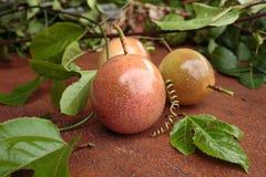Passionfrukt Arkivbild
