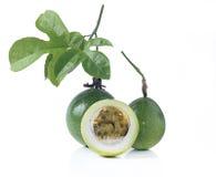 Passionfrukt eller maracuya Royaltyfri Foto