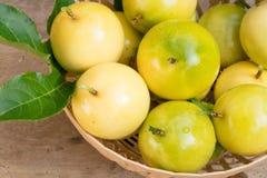 Passionfrukt i korg Royaltyfria Foton