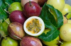 Passionfrukter Arkivbild