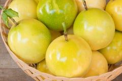 Passionfrukter i korg på trä Arkivbild