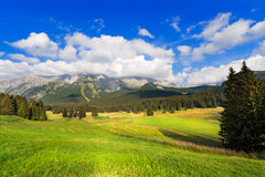 Passo Campo Carlo Magno - Trentino Italien Arkivfoto