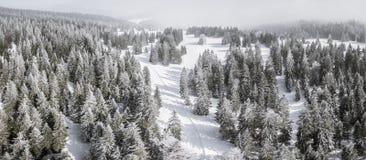 Passo de la Givrine 1228 m. È un passaggio di alta montagna in Jura Mountains nel Cantone di Vaud in Svizzera Fotografia Stock Libera da Diritti
