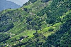 Passo dell'Aprica (Italy) Stock Photo