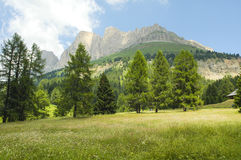 Passo di Costalunga, Dolomites Stock Photos