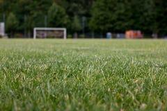 Passo do futebol da grama Foto de Stock Royalty Free