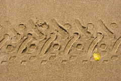 Passo do velomotor na areia Imagem de Stock Royalty Free