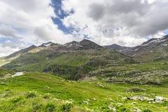 Passo Gavia Stock Images