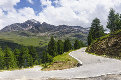 Passo Gavia Stock Photo