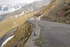 Passo Gavia, 2621m, is a high mountain pass in the Italian Alps Royalty Free Stock Images