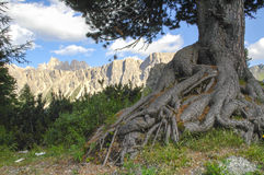 Passo Giau, Dolomites Royalty Free Stock Images