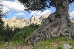 Passo Giau, dolomity obrazy royalty free