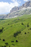 Passo Pordoi, Dolomites Stock Images