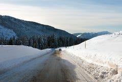 Passo Rolle, las dolomías, Italia septentrional Fotos de archivo